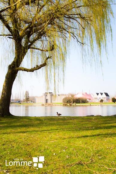 Parc naturel urbain nos quipements ville de lomme for Piscine de lomme
