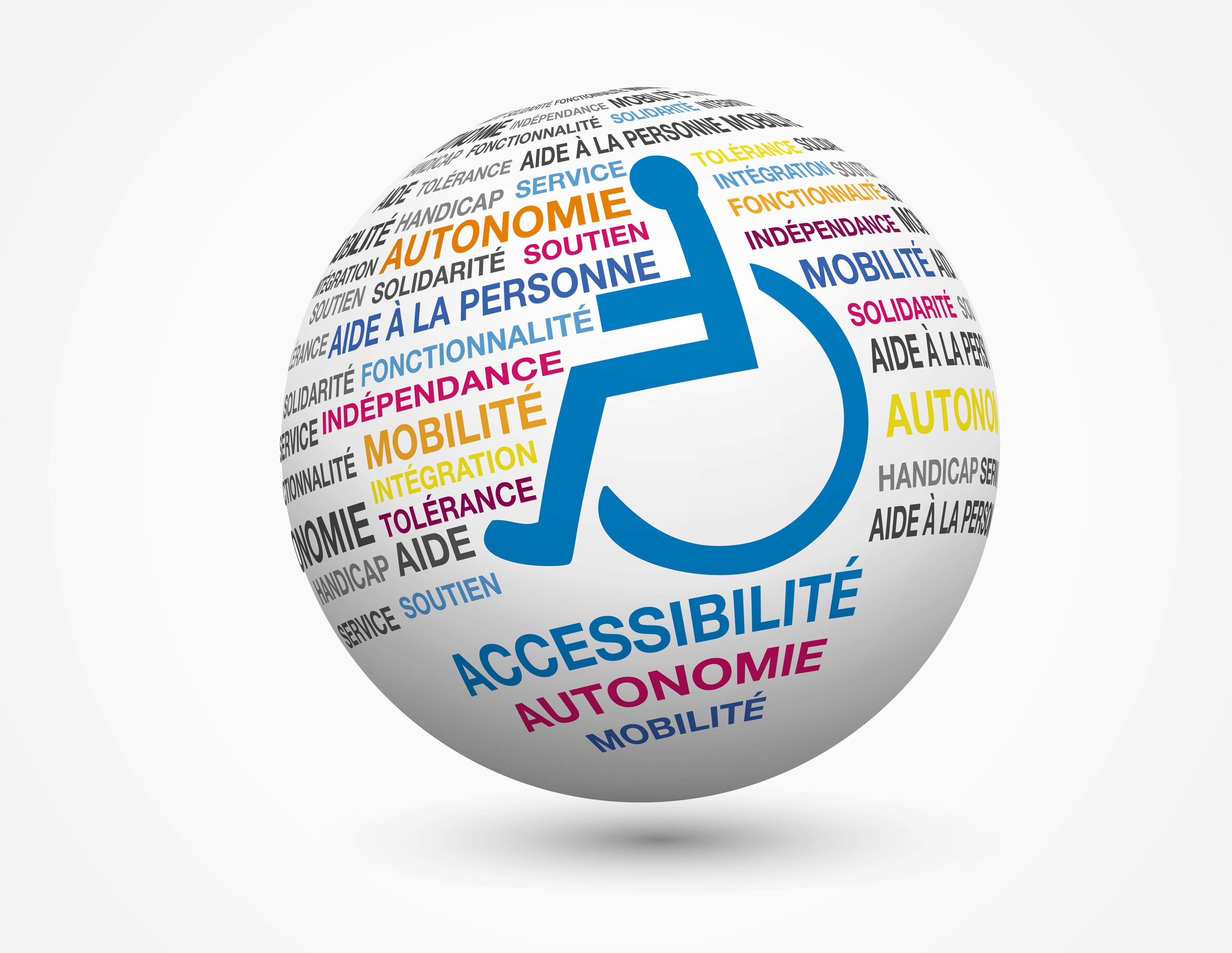 Personnes en situation de handicap solidarit ville de for Aide de l etat pour renovation