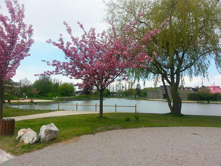 Parcs et jardins cadre de vie lomme au quotidien for Jardins et espaces verts