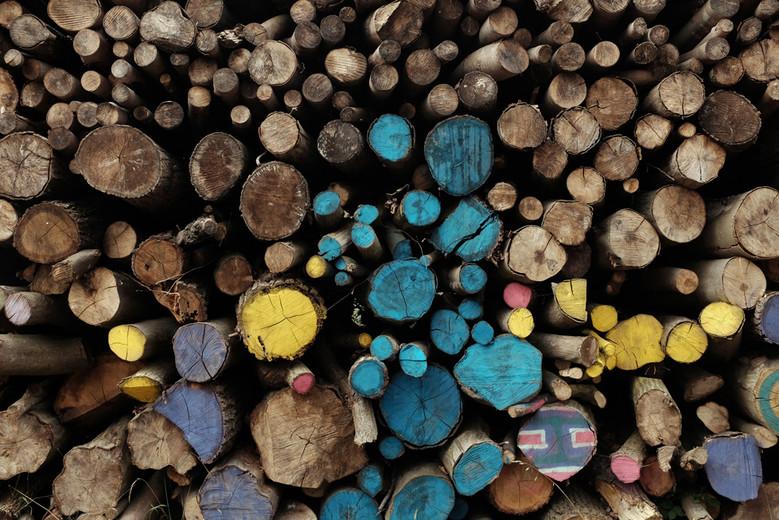 demande d 39 autorisation administrative de coupe de bois formulaire d 39 urbanisme d marches en. Black Bedroom Furniture Sets. Home Design Ideas